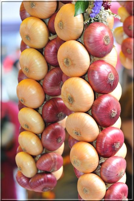Berne : le marché aux oignons