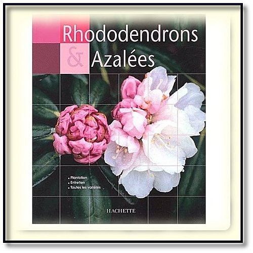 livre rhododendrons