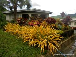 L'île de Tobago