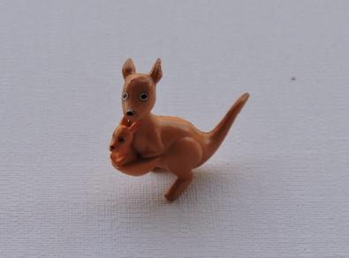 Kangourou miniature