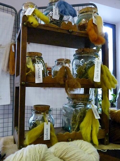 Présentation des plantes tinctoriales en tous lieux