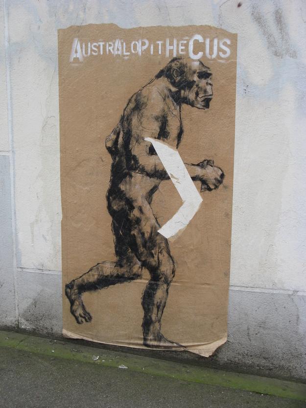 Australopithecus Brest 29-12-2015