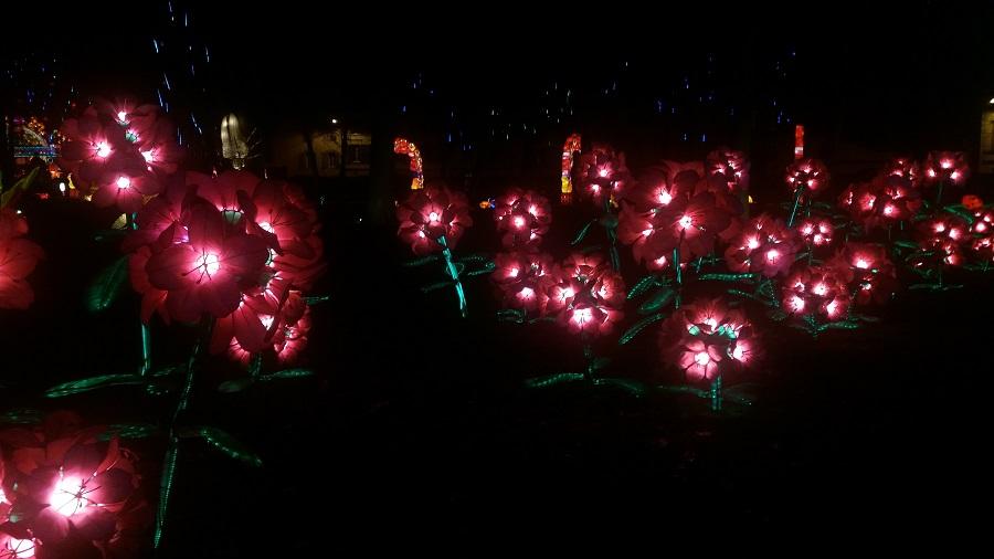 Le Festival des Lanters de Gaillac