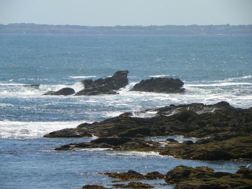 Balade sur la côte ouest de la presqu'île de Quiberon ( 2 )