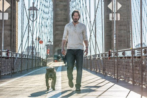 JOHN WICK 2, le 22 février 2017 au cinéma ! Découvrez le nouveau costume de Keanu Reeves.