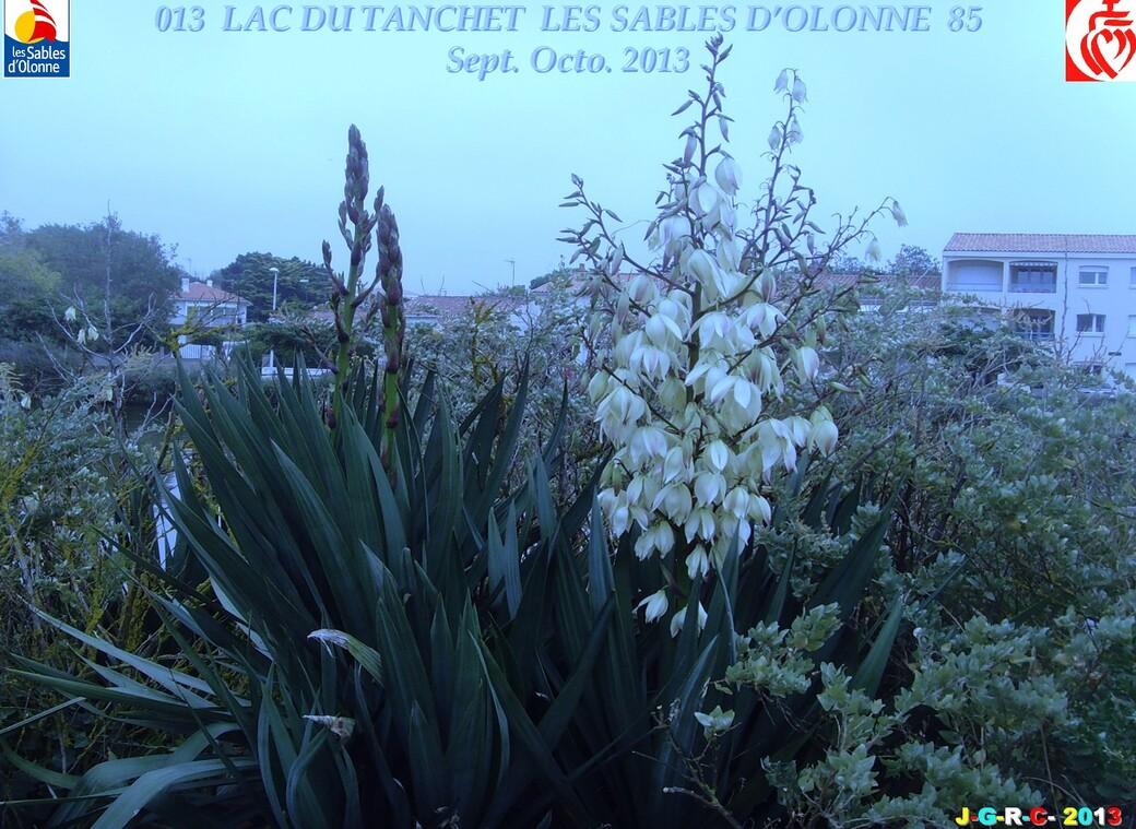VACANCES 2013 LAC DU TANCHET SABLES D'OLONNE SEPT OCT/2013 13/12/2013
