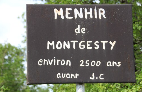 A Montgesty...