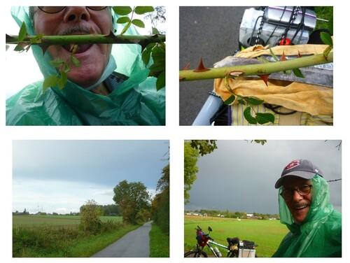 L'automne de confiné en photos à Gembloux 2020