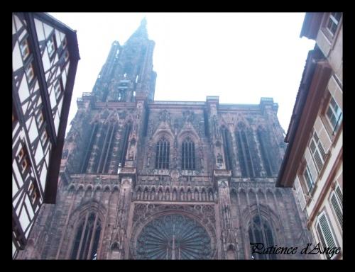 SAL Alsacienne Quaker terminé