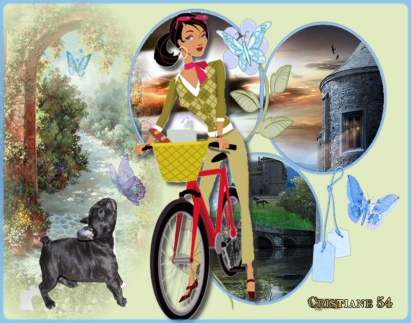Défi pour mon amie Nathie ( A bicyclette )