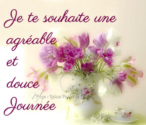 Bon Mardi, Les Ami(e)s - améthyste