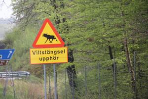 Scandinavie-2012-semaine1 2764
