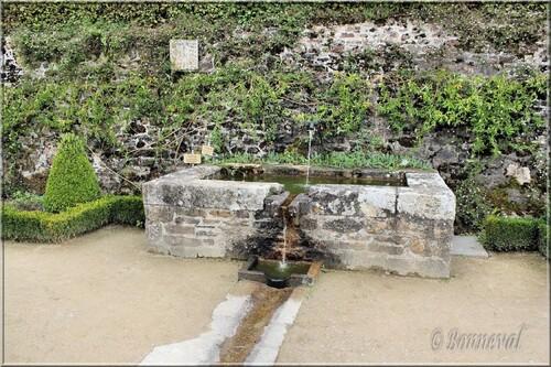 Abbaye de Daoulas Finistère un bassin dans le Jardin de Plantes Médicinales