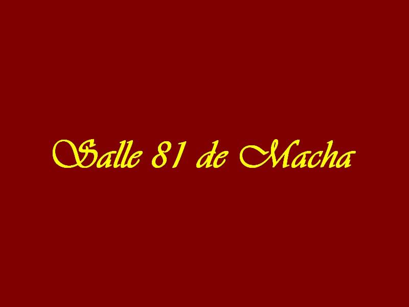 Salle 81 de Macha
