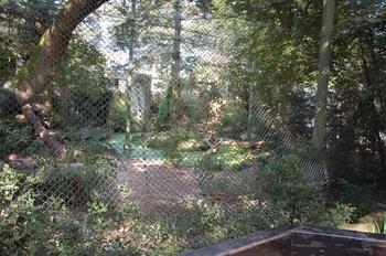 dierenpark emmen d50 096