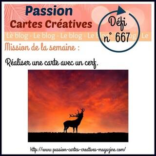 Passion Cartes Créatives#667 !
