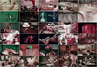 Ur kärlekens språk / Language of Love. 1969. HD.