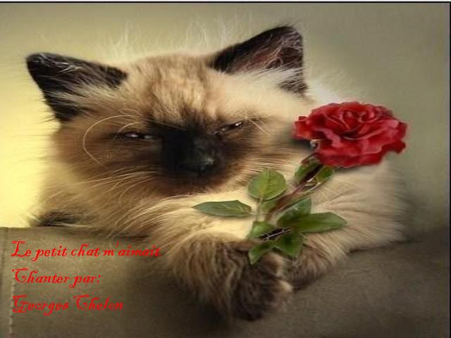 Le petit chat m'aimait * Georges Chelon *