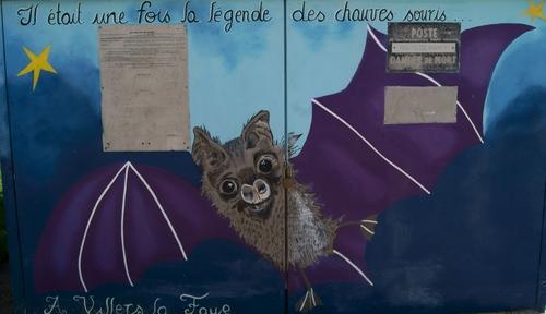 """""""Chauve-souris à Villers"""" - Mercredi 29 mai 2019"""