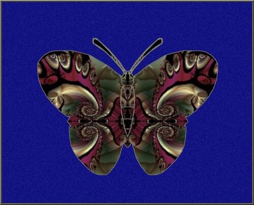 Butterfly création de M. Georges