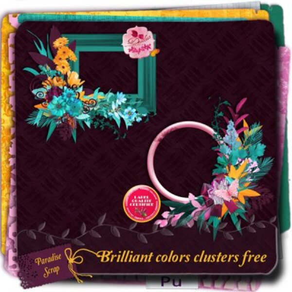 2 Clusters gratuits avec le kit Brilliant colors de Desclics