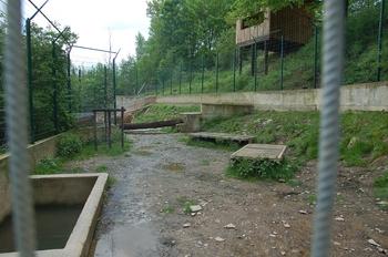 Parc animalier Bouillon 2013 enclos 129