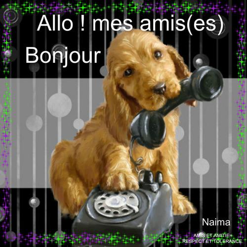 ALLO MES AMIS(ES).