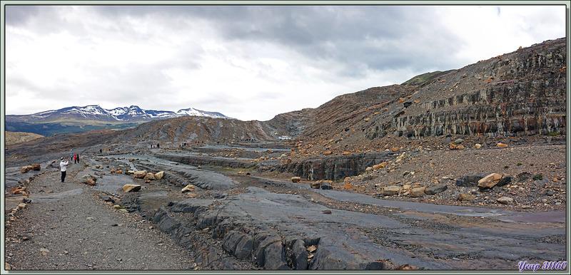 Paysage géologique d'un autre monde - Lago Guillermo - Estancia Cristina - Lago Argentino - Patagonie - Argentine