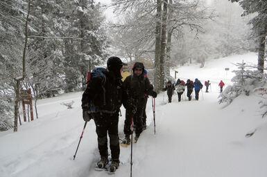 17 janvier 2017 - Raquettes au Col de Carri
