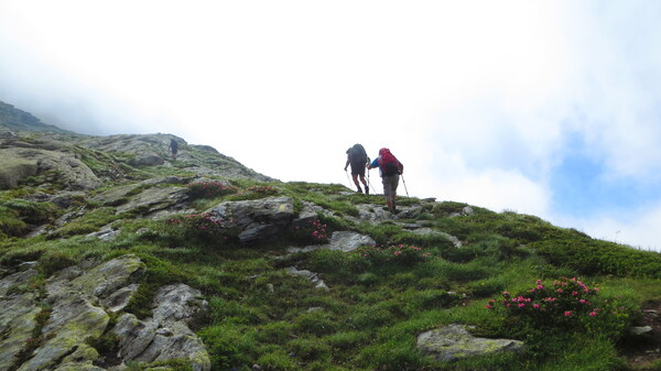Petit Mont Cenis Bramanette