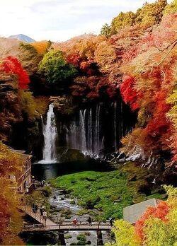 Chutes de Shiraito 白糸の滝