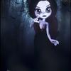 tim doll