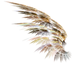 PNG képek: Angyalok, tündérek