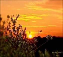 Soleil couchant........H.G