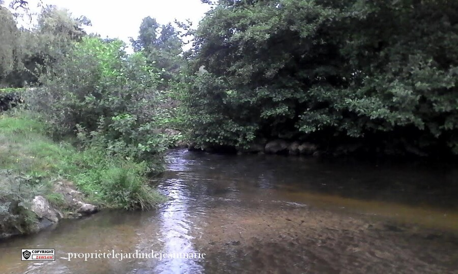 le Ciron et ces affluents(petite rivière de notre Gironde)