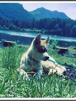 Max (3 mois)