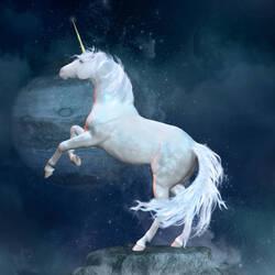 - Licornes -