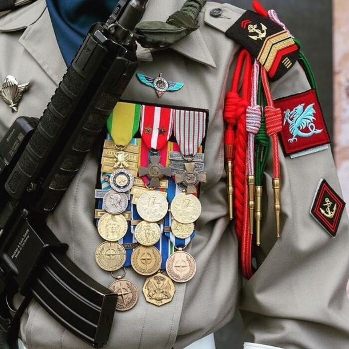 Les médailles de la République (Ils vont finir par me faire regretter de l'avoir refusé *** MDR !!!)