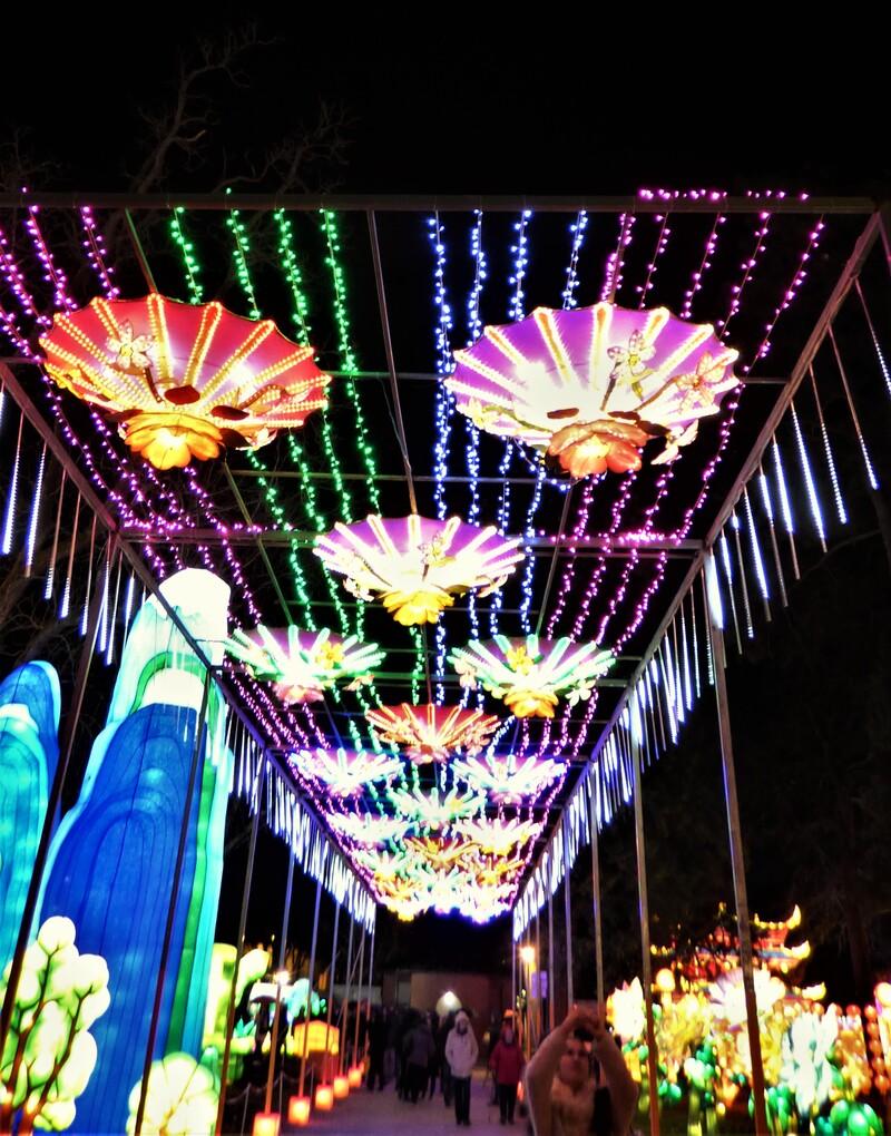 La Fête des Lanternes...Féérie chinoise à Gaillac (tarn)
