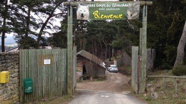 La clôture du parc scientifique, une petite partie du parc des loups, a été fracturée la nuit dernière. © Alexandre Grellier
