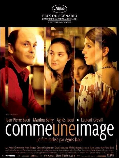 OMME UNE IMAGE BOX OFFICE FRANCE 2004