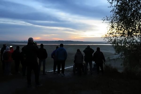 """Une sortie dans l'Aube et la Marne, à la rencontre des """"Demoiselles du lac du Der"""", avec la Société Mycologique du Châtillonnais"""