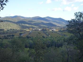 La vallée du Réal Collobrier