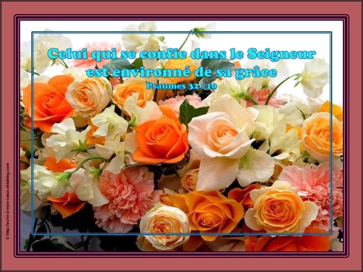 Celui qui se confie dans le Seigneur est environné de sa grâce - Psaumes 32 : 10