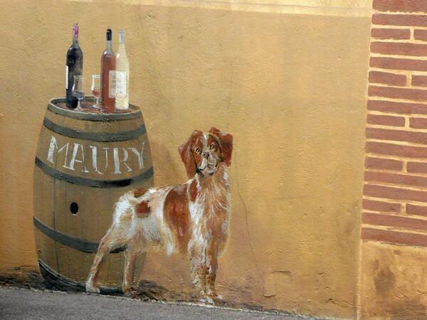 Images insolites de vacances trompe l'oeil chien