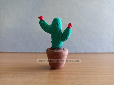 Silk Clay - Cactus (1)