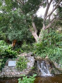 GIBRALTAR -parc botanique