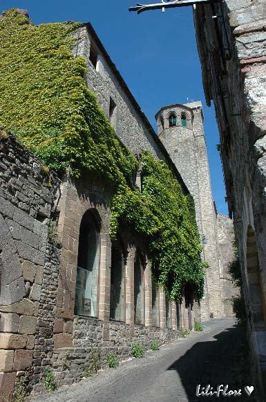 Midi-Pyrénées_Tarn_Cordes-sur-Ciel-81170
