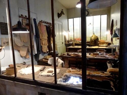 Anciennes vitrines dijonnaises