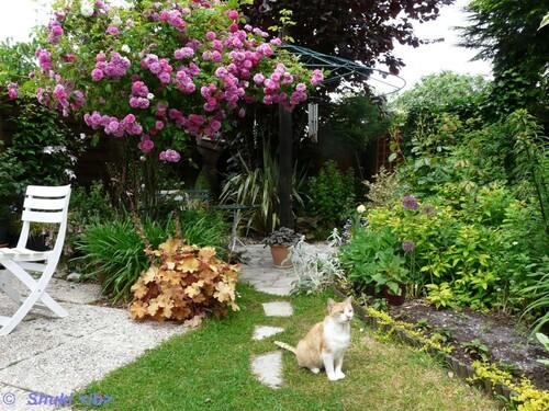 Vues sur jardin....